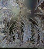 «А в городе том сад, всё травы да цветы...», а следующая строчка была показана год назад http://www.lensart.ru/picture-pid-11868.htm?ps=18Началось....Устойчивый морозец ассоциируется с уже начавшейся зимой. И хоть снега еще немного (у нас), это уже Она...