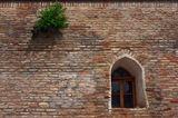 Нашел в архиве эту прелесть.г. Шахрисабз (Узбекистан), май 2008 г.