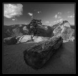 Glacier Point, Yosemite NP, California USA