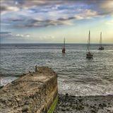 Мадейра, Фуншал, октябрь 2008 года. Спасибо IVH за помощь в обработке фото.