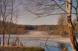 Отсканированная пленкаOlympus 105Gпейзаж, пейзажи, Петербург, Питер, карьер, окрестности, март, весна, прогулка