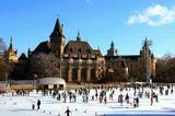 Фотография выполнена в Будапеште, в парке Варошлегет, в декабре 2008