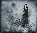 Фотошоп, коллаж, дорисовкаДевушка чёрная луна чёрные бабочки небо готика