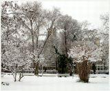 ...у нас тоже бывает снег...)))С Новым Годом!!!
