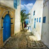 Средиземноморье, Тунис, городок Сиди-Бу-Саид, пристанище поэтов, художников, писателей, романтичный уголок на побережье Северной Африки....Приятного просмотра...