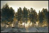 штатив, панорама 8 кадров. Хакасиия Енисей ГЭС утро зима