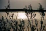 Закат на Арнасайских разливах