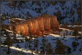 Bryce Canyon NP, Utah, USA, Jan 09. фокусное - 400мм.