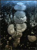 Пузыри воздуха, застывшие в толще льда на озере. Целыми колониями поднимались они и до поры застыли в ожидании тепла... Напомнили мне звездные корабли летящие из недр Вселенной. Потому так и назвал :)