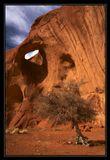 Око Солнца (Eye of the Sun) - индейское название этой арки. Есть подозрение, что дерево на ПП - это триффид, ходящий и пьющий соки из индейцев навахо по ночам ))). Долина Монументов, Аризона, США.