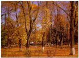 Осенний городской пейзаж.