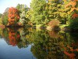 Питер осень отражение отражения озеро