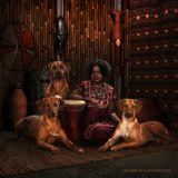 совместный проект laini.ru с ki-fa.ru: серия постеров о собаках в стиле их этнических корней