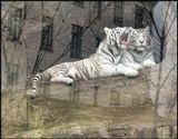 Московский зоопарк, снегопад, 03.04.09