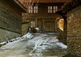 Историко-архитектурный заповедник Жеравна... Болгария... Находится в горах изолированно от цивилизации =) Живут люди... работают музеи... Приехала я ... гуляю.. снимаю... и за очередным поворотом такая вот встреча... местные жители идут домой... сами... солнце заходит... им пора домой =)