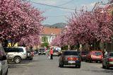 Г. Мукачево Один из улиц!Весна