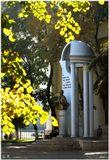 """Памятник Пушкину. Установлен в Воронеже в 1999 г.Скульпторы И. П. Дикунов и Э. Н. Пак.Поэт изображен в весьма необычной позе, как бы разводя руки в стороны. Народ шутит: """"Александр Сергеевич показывает, какую большую рыбу он поймал"""".Canon EOS 450D Kit"""