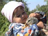 Дети очень переживают за животных. Схватила уточку и у обоих бьётся сердечко