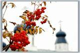 рябина,красный,осень,храм
