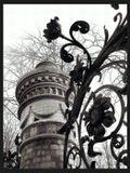 Фрагмент решетки Михайловского сада