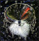 фонтан в тени, на воде отражения цветов, которые на солнце