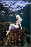 Подводное фото. Средиземное море. Кипр.