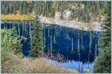 Этому озеру нет и ста лет. Молоденькое... После обвала река затопила низинные ели. Они не сгнили в ледяной воде. Так и стоят, пики стволов в небо направив.