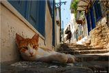 Гидра - один из островов вблизи греческого Пелопоннеса.