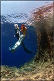 """Подводное фотоКрасное море. Остров """"Big Brother""""июль 2009"""