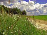 пейзаж,природа,подмосковье,из старого альбома
