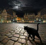www.zeninphoto.com