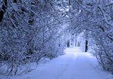 Когда уже снег растаял. люди разделись, за одну ночь выпал снег... много снега...