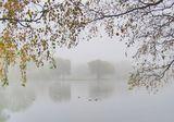 Вода Растительность Туман Осень