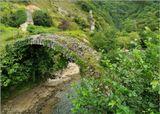 В 7 км от Сухума на северо-восток в невероятно красивом ущелье реки Басла находится уникальный каменный Беслетский мост, построенный 800 лет назад. Древний каменный мостик, почерневший от сырости и поросший мхом, перекинут через шумящую горную речку.