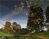 Осень пруд отражение листва