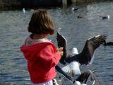 девушка и птицы, ребенок,