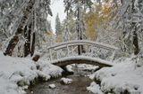 """нынче и обычное лето не очень удалось (в июне снег выпадал), вот и """"бабье"""" лето больше на зиму похоже...снимок сделан в субботу, 19 сентября 2009 года, г.Улан-Удэ"""
