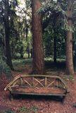 """снято на пленкуиз серии """"то чего уже не существует"""" скамьи давно уже нет , остался лес и воспоминания.снято в одной из усадеб  Германии.скамейка,романтика,лес,воспоминания"""