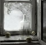 Сюжет этой работы навеян прошлым...старое бабушкино окно,на котором она хранила зимой яблоки: доставала их из погреба и раскладывала  на окошке. А в графин ставила сухоцветы из своего сада. Мое окошко это конечно не ее ....Это окно в подъезде на площадке....