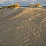 Природный заповедник Наглю.На горизонте- Балтийское море.