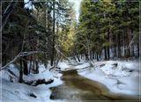 """Под голубыми небесамиВеликолепными коврами,Блестя на солнце, снег лежит;Прозрачный лес один чернеет,И ель сквозь иней зеленеет,И речка подо льдом блестит..Пушкн А.С. """"Зимнее Утро""""."""