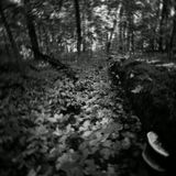 а кому нехватило депрессии - можно послушать тут http://stream.ifolder.ru/14489003