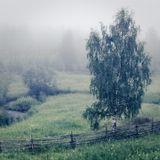 туманная, сырая погода