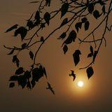 октябрь 2005 года... Коломенское... утро... снято в тумане, поднимающемся на Москвой-рекой...