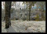 Осень в горах Баварии, октябрь 2009