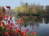 Вода Растительность Осень