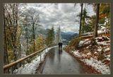 Германия, Баварские Альпы, октябрь 2009.