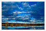 река небо лес горизонт кустарник отражение облака синева движение