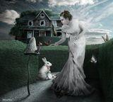 Фотошоп, коллаж, дорисовка Алиса гриб гусеница ящерица домик кролик часы заяц карты правильное решение
