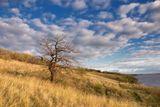 Осень на днепровских берегах